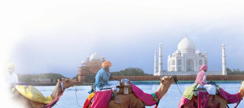 INDIA FANTÁSTICA
